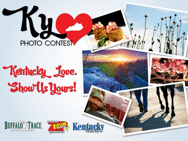 Photo contest main image