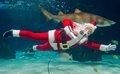 Scuba Santa's Water Wonderland