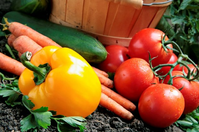 garden veggies sm.jpg