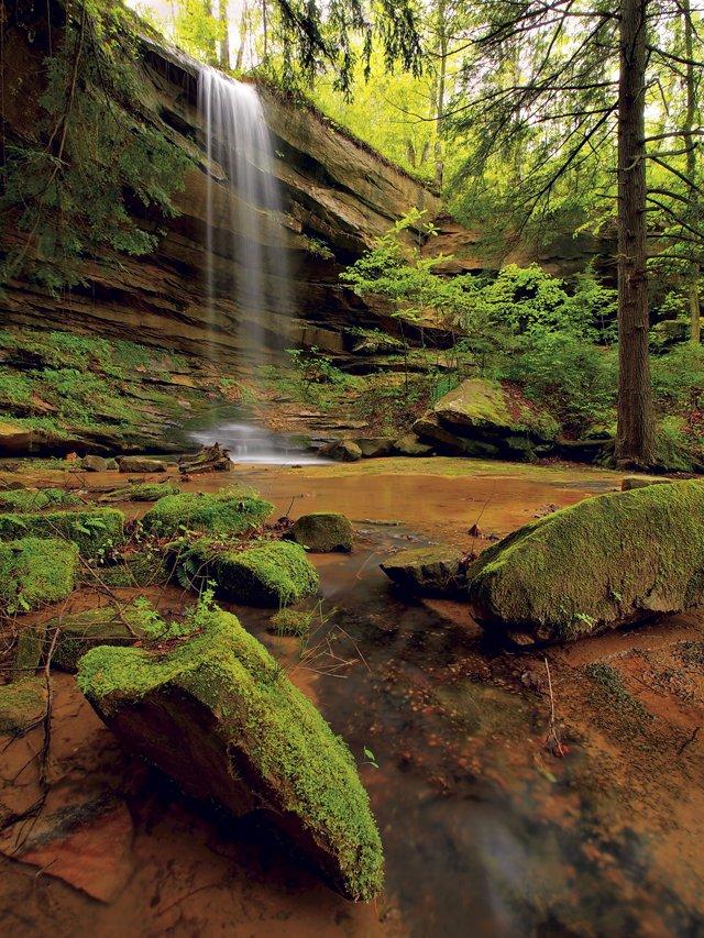 Wrigley-Falls-Vertical-Spring-Green.jpg