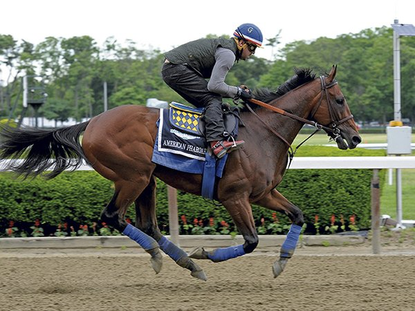 American Pharoah_AME photo.jpg
