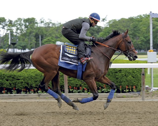 American-Pharoah_AME-photo.jpg