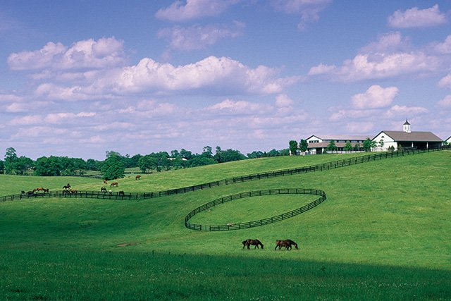 Horse Farm on Old Frankfort Pike-GBurch.jpg