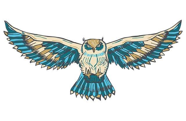 ROMP-owl.jpg