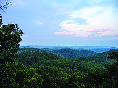landscape-and-forest-in-daniel-boone-national-forest-in-kentucky.jpg
