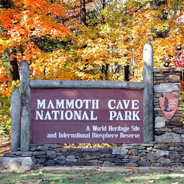 Mammoth Cave.png