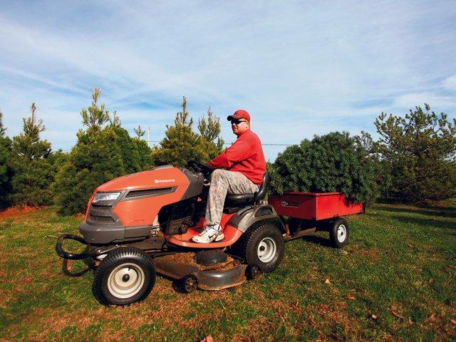 Werkmeister's Christmas Tree Farm 3