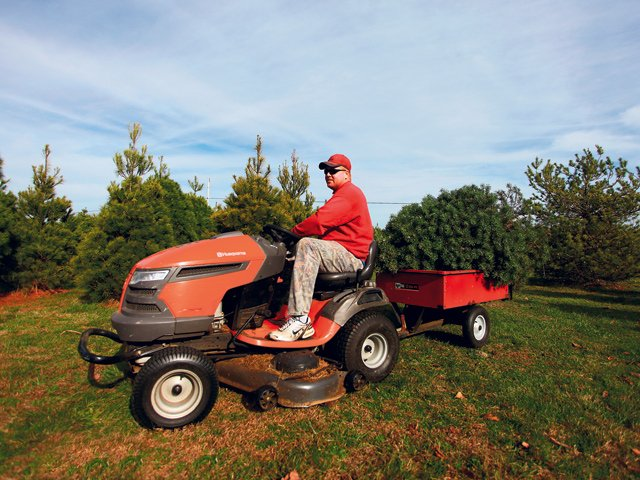 Werkmeister's Christmas Tree Farm 3