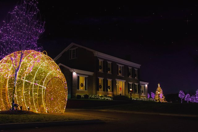 MSH_Christmas-Lights_2019_E2_18.jpg