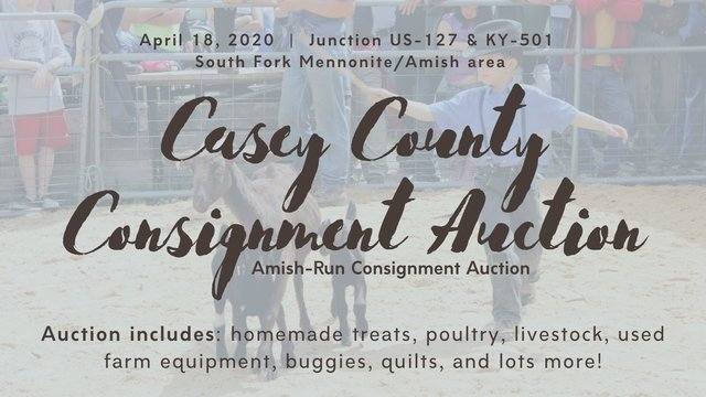 Amish Ky Auction.png